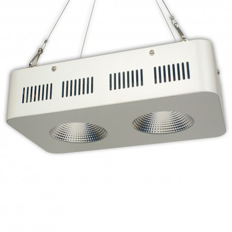 LED LAMP APL COB 2x50W Grow LED