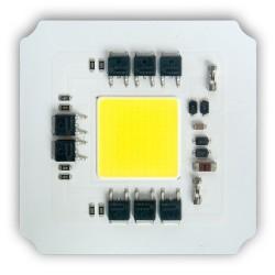 Dioda 100W LED COB AC 230V Neutralna