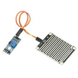 Rain detector module