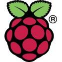 Raspberry Pi microboards